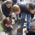 1º Encontro de Conodontes é realizado no Cenpáleo em Mafra